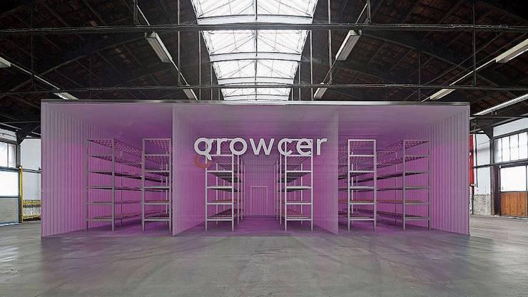 So sollen die Kammern der Vertical Farm in Basel aussehen. (Bild: pd)