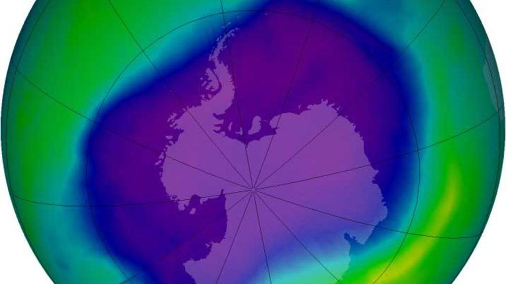 Ein Satellitenbild der Nasa zeigt die Ausdehnung des Ozonlochs über der Antarktis. Während sich die Ozonschicht über den Polen seit Jahren erholt, dünnt sie sich in tieferen Breiten weiter aus, wie Schweizer Forschende berichten. (Archivbild)