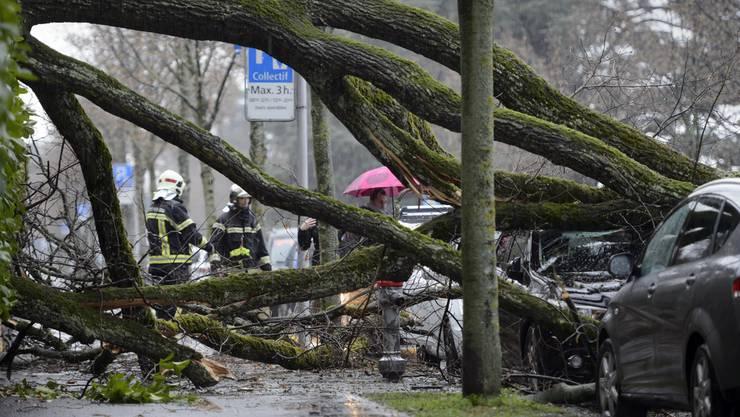 """Die Sturmwarnung von MeteoSchweiz sagt für weite Teile der Schweiz die Gefahrenstufe 3 (""""erheblich"""") voraus. (Archivbild)"""