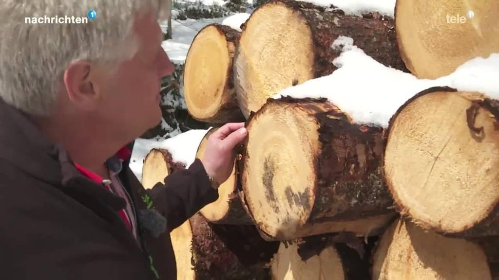 Zuger Wälder werden frei von Pestiziden