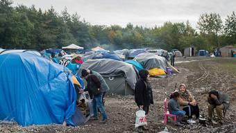 """6000 Menschen sollen im """"Dschungel"""" genannten Flüchtlingscamp in Calais leben. Jetzt fordert die Justiz von den Behörden, die Lage für die Flüchtlinge zu verbessern. (Archivbild)"""
