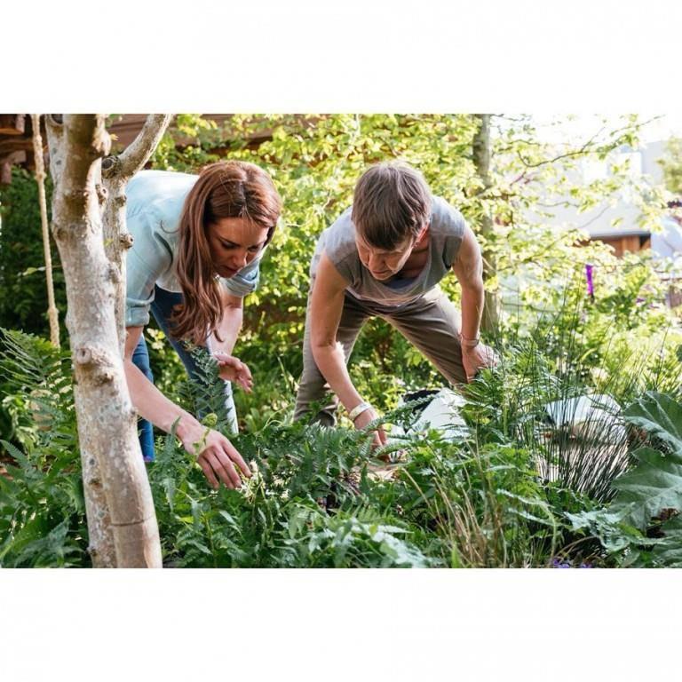 Kate (37) ist sich selbst für Gartenarbeit nicht zu schade. Für eine Ausstellung hat sie ihren eigenen Garten entworfen. (© Instagram/kensingtonroyal)