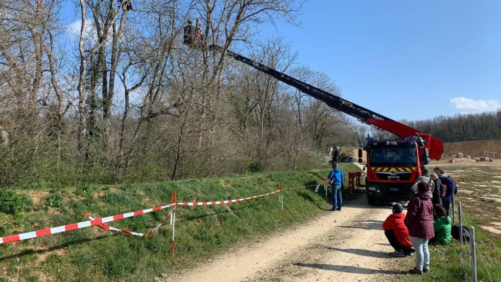 Rettungseinsatz am Baum für zwei Umweltaktivisten auf einem Gelände der Holcim im Kanton Waadt.