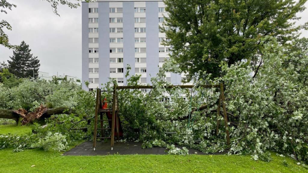 Der Baum stürzte auf einen Spielplatz.