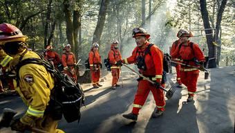 In Kalifornien werden im Bezirk Sonoma im Kampf gegen Buschbrände auch Häftlinge als Feuerwehrleute eingesetzt.