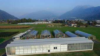 Der Ständerat macht weiter Druck gegen die geplante Zentralisierung von Agroscope. Er verlangt, dass die Forschungsanstalt in eine autonome öffentlich-rechtliche Anstalt des Bundes umgewandelt wird. (Archivbild)