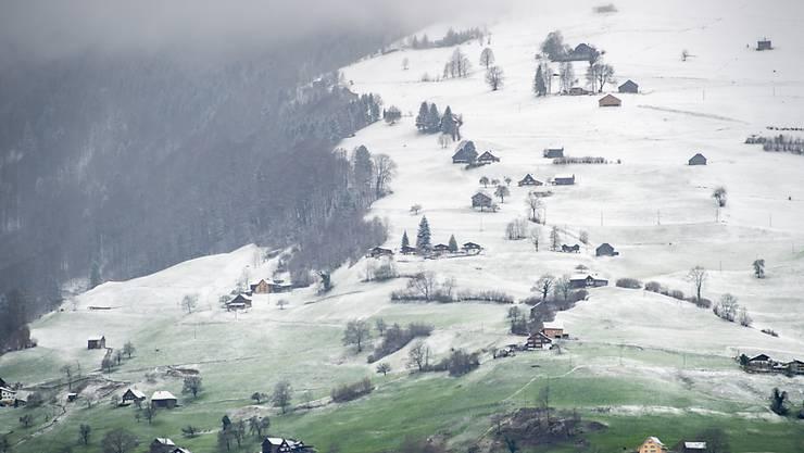 Zart bestäubt und in Pastell: Neuschnee liegt auf der Streusiedlung am Studnerberg in Grabs.