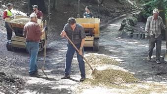 Die freiwilligen Helfer der Philanthropischen Gesellschaft Union Solothurn bei der Sanierung des Schluchtwegs zur Einsiedelei.