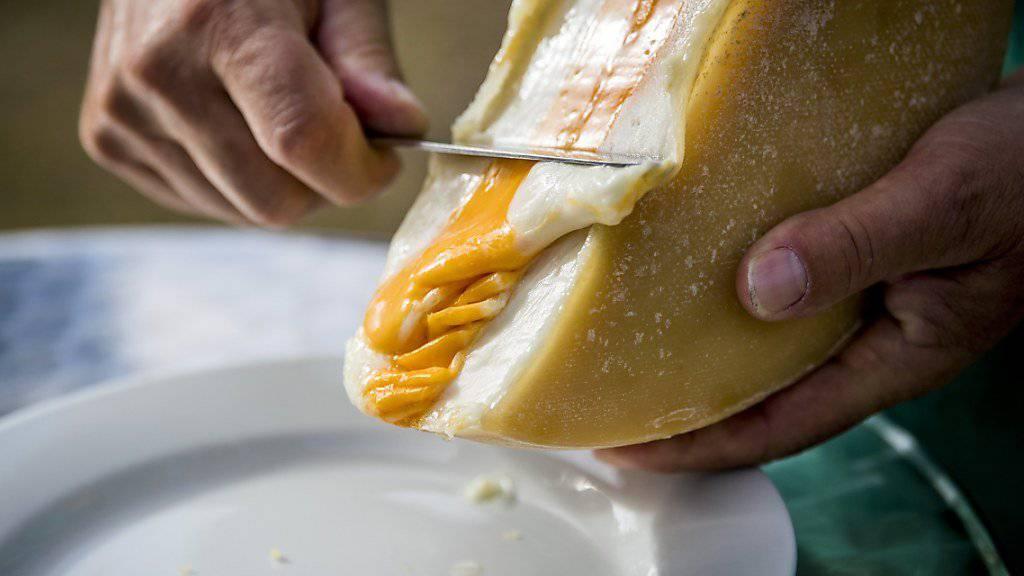 Beim neuartigen Raclette-Käse sticht die gefärbte Kuhmilch-Schicht in der Mitte heraus.