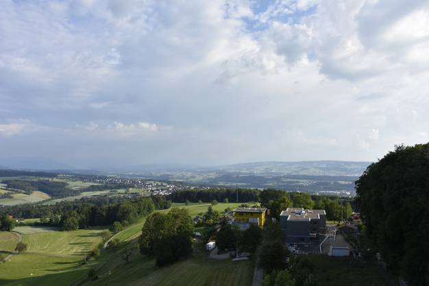 Auf dem Hasenberg, gleich oberhalb vom Haus Morgenstern, soll der neue Aussichtsturm entstehen. Dafür wurde jetzt ein Verein gegründet.