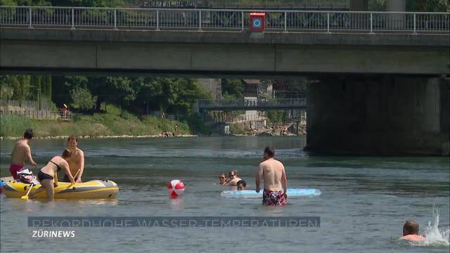 Zürcher Seen und Flüsse so warm, wie seit 14 Jahren nicht mehr