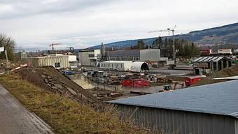 Ein 5,2 Hektar grosses Areal in der Bremgarter Oberebene soll aufgewertet werden.