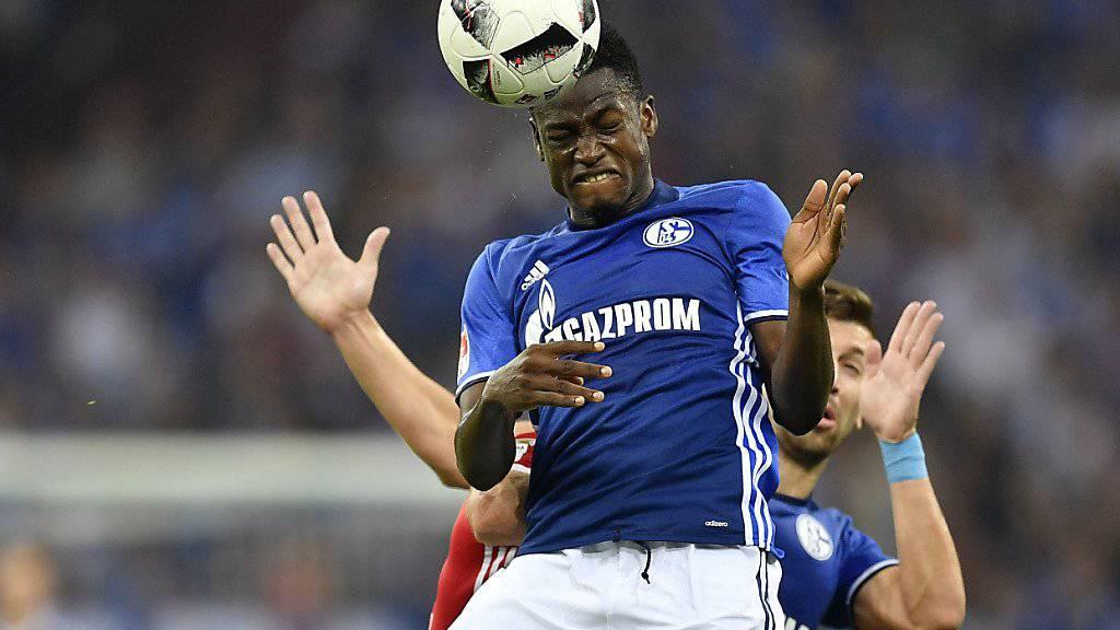 Abdul Rahman Baba steht Schalke in der Bundesliga-Rückrunde nicht zur Verfügung