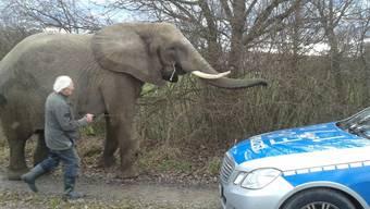 Der entlaufene Elefant und der Streifenwagen der deutschen Polizei.