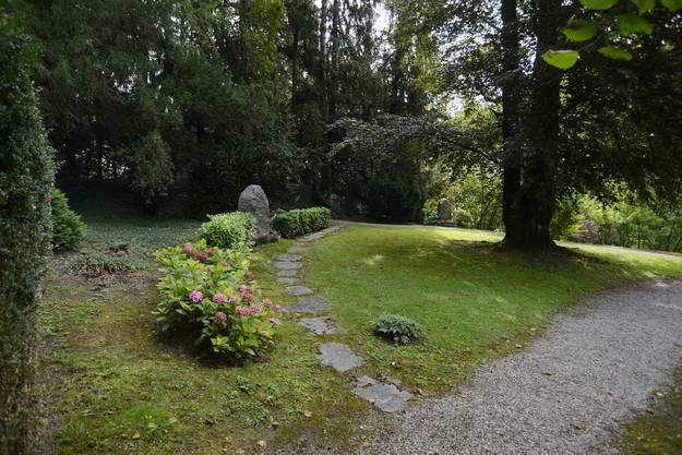 Die Gräber von Theodor und René Schild befinden sich im Schatten einer mächtigen Buche
