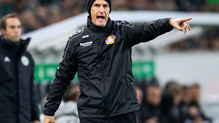 War zuletzt in der Bundesliga für Bayer Leverkusen tätig und soll nun den FC Augsburg stabilieren: Heiko Herrlich