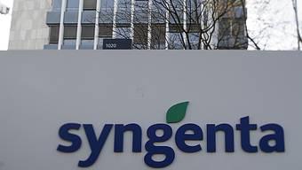 Syngenta hat wegen des starken Dollars weniger Umsatz und Gewinn im ersten Halbjahr erzielt.