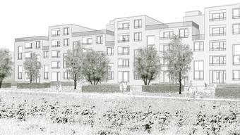 Neubau Wohnsiedlung Neufeld: Die Südfassade des Siegerprojekts des Brugger Architekturbüros. (ZVG)