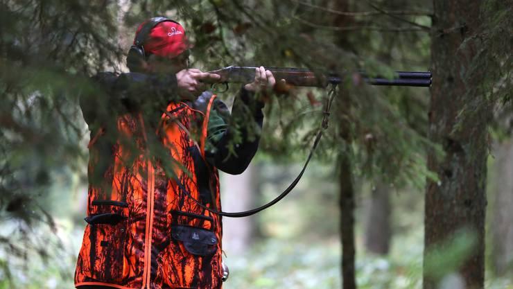Im Kanton Zürich gibt es rund 1500 aktive Jäger. Sie sollen durch Wildhüter ersetzt werden.