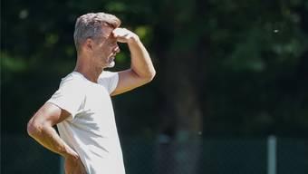 Mann mit Weitblick gesucht: Alain Sutter könnte am nächsten Montag der neue starke Mann im Schweizer Fussball werden.