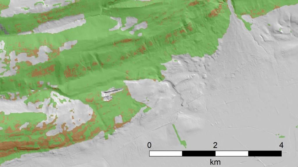 Satellitenbilder: Schweizer Wälder kamen vergleichsweise gut durch Hitzesommer