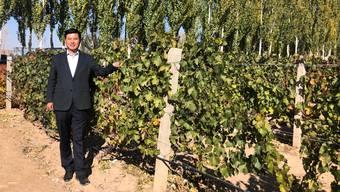 Shao Qingsong hat sich mit der Weinzucht einen Lebenstraum erfüllt.