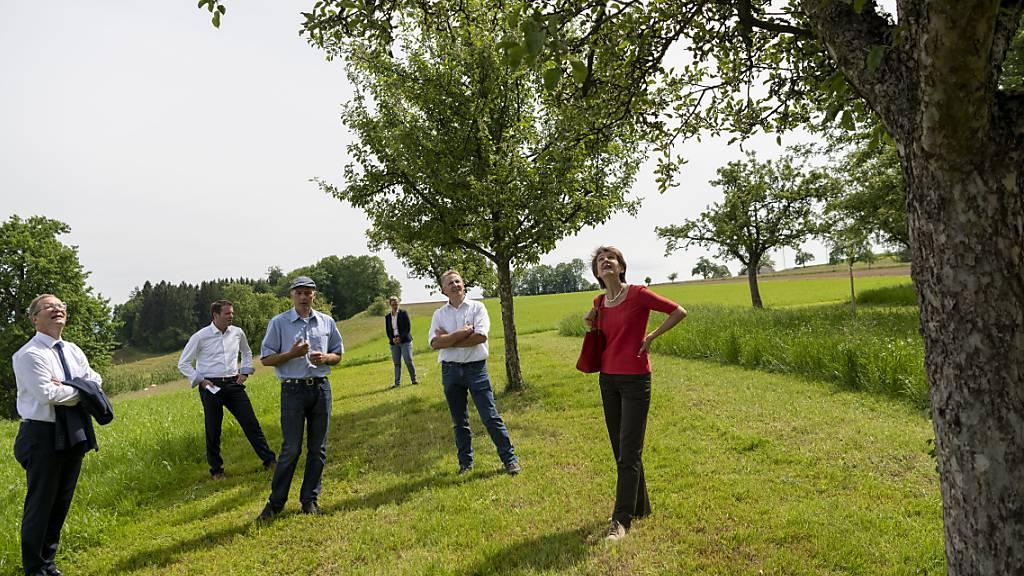 Der Kanton Thurgau verankert die Förderung der Artenvielfalt im Natur- und Heimatschutzgesetz. Im Bild Bundespräsidentin Simonetta Sommaruga (rechts) beim Besuchs anlässlich des «Tags der Biodiversität» in Hosenruck TG im Mai 2020.