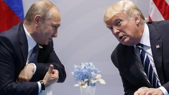"""Russland soll wieder mit am Verhandlungstisch sitzen, auch wenn dies nicht """"politisch korrekt"""" erscheinen möge, findet Trump. (Archivbild)"""