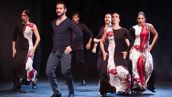 In «Rondo Flamenco» spielen das Suchen und Finden einer Gemeinschaft die zentrale Rolle.
