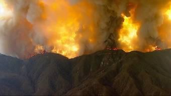 Feuer wächst weiter: Schlimmste Waldbrände in Kaliforniens Geschichte