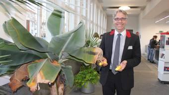 Laut Bahnhofchef Daniel Hafner (Bild) wurden etwa 15 Bananen geerntet.