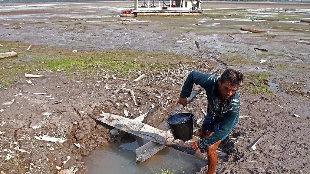Ein Bericht der Weltbank warnt vor extremer Armut für weitere hundert Millionen Menschen , wenn die Erderwärmung nicht gestoppt wird.