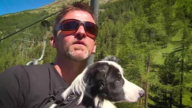 Aus dem Tierheim Tierdörfli des Tierschutzvereins Olten-Solothurn und Umgebung