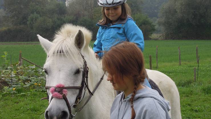 Pony-Plausch