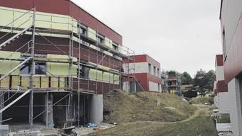 Das grelle Gelb der neuen Einfamilienhäuser beim Gönhard in Aarau schreckte viele Käufer ab. Nun wurden die Gebäude neu gestrichen und sollen reiche Zürcher anlocken.