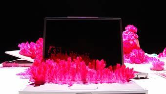 """Mit auf den Tastaturen wuchernden Kristallen macht das Künstlerduo Gerda Steiner und Jörg Lenzlinger in der Installation """"Die Konferenz"""" von 2010 Laptops auf ästhetisch bezaubernde Weise als Computer nutzlos."""