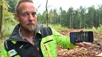 Holzschläge wegen Borkenkäfer im Niederamt