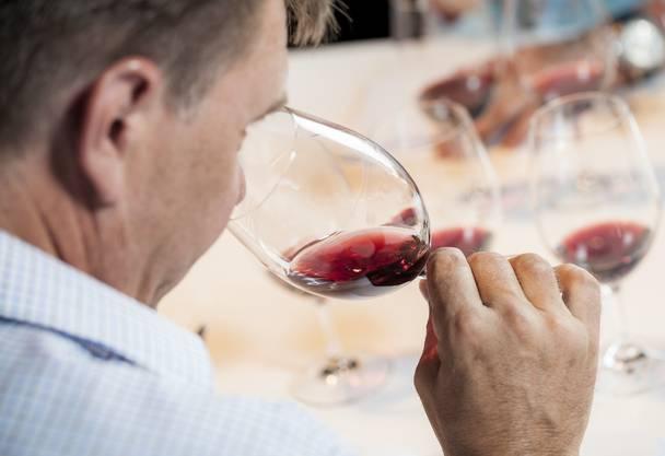 Bio-Wine Tasting