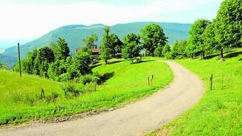 Die Strasse auf dem Oberberg ob Balsthal wird nebst anderen teilweise saniert.