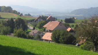 Im diesem Gebiet entspringt in Biezwil die Schulhausquelle. zvg