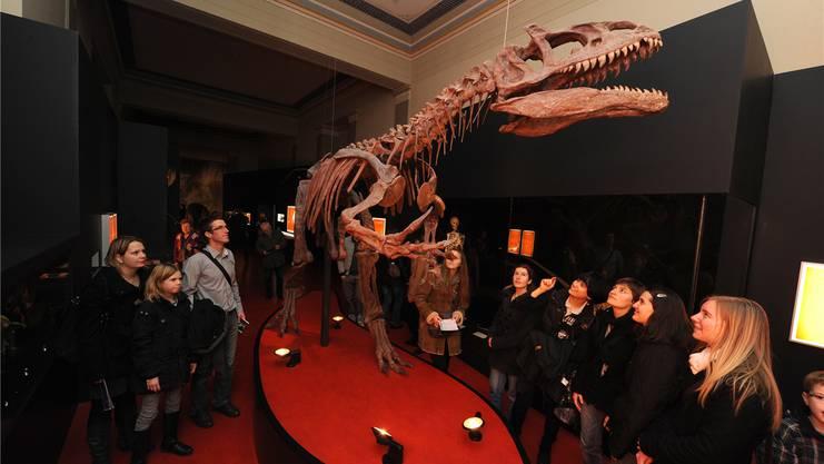 Das Dinosaurierskelett im Naturhistorischen Museum fasziniert täglich die kleinen und grossen Besucher. Es handelt sich um den Nachbau eines Allosaurus-Skeletts.