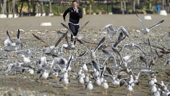 Taulant Xhaka hat sichtlich Spass: Beim Strandspaziergang verscheucht er die Möwen.