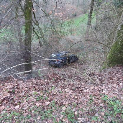 Das Auto stürzte samt Fahrer den Abhang hinunter und landete im Wald.