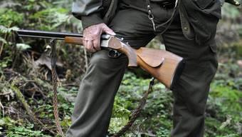 «Jagen ohne tierquälerisches Treiben» würde laut dem Aargauer Regierungsrat eine tierschonende und effiziente Regulierung der Wildbestände erschweren