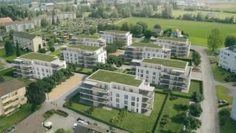 Die vier Wohnblöcke rechts werden in der ersten Etappe gebaut.