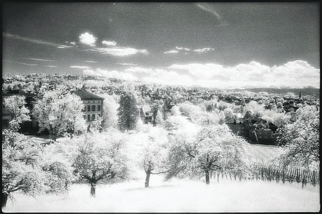 Weinegg, 05/2014: «Die unsichtbare Geschichte» hat Jan Conradi seine Serie von Infrarotfotografien übertitelt, die wie der Versuch erscheinen, Unsichtbares sichtbar zu machen.