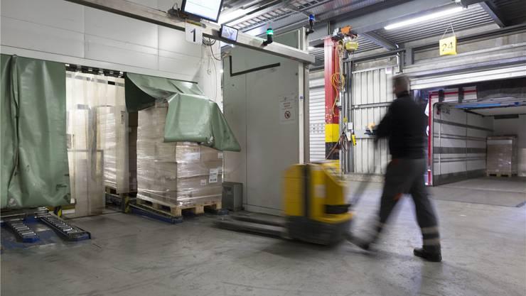 Neun junge Flüchtlinge haben bei der Dietiker Transporfirma Planzer eine einjährige Integrationsvorlehre als Logistiker angefangen.