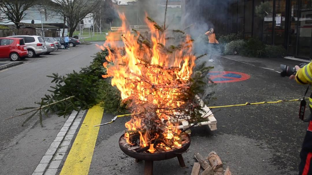 So schnell brennt ein alter Weihnachtsbaum