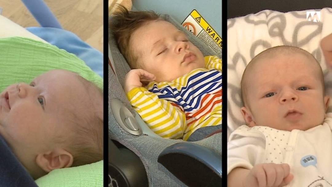 Baby-Boom bei Tele M1