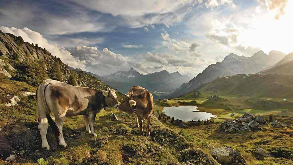 Schweizer Pärke locken mit «kleinen Weltwundern»